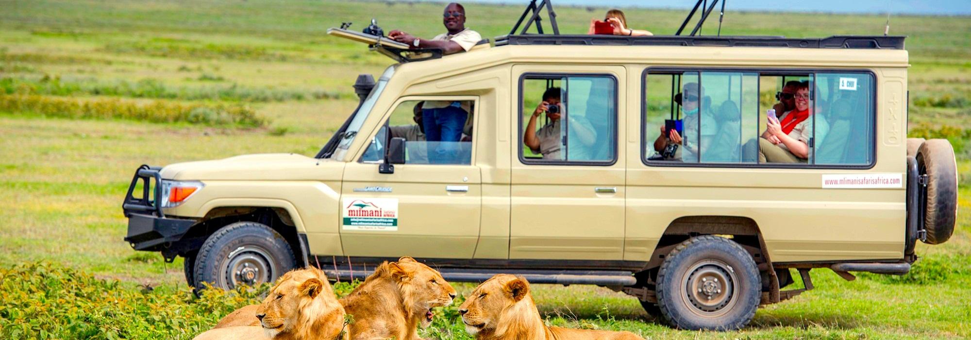 authentic safari tanzania