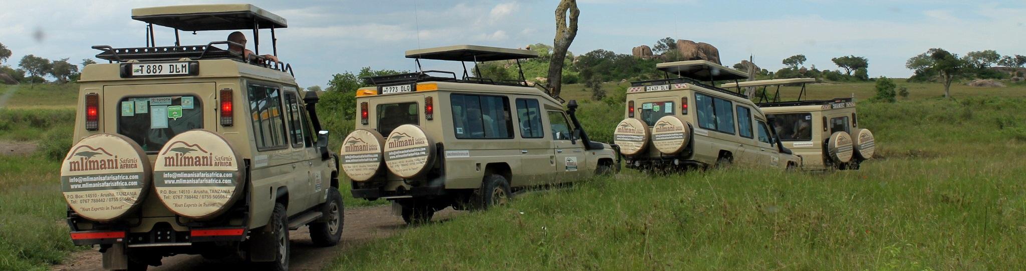 mlimani safaris africa
